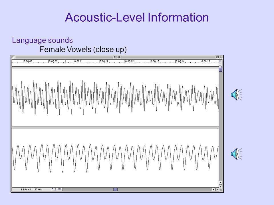 Acoustic-Level Information Language sounds Male Vowels (close up)