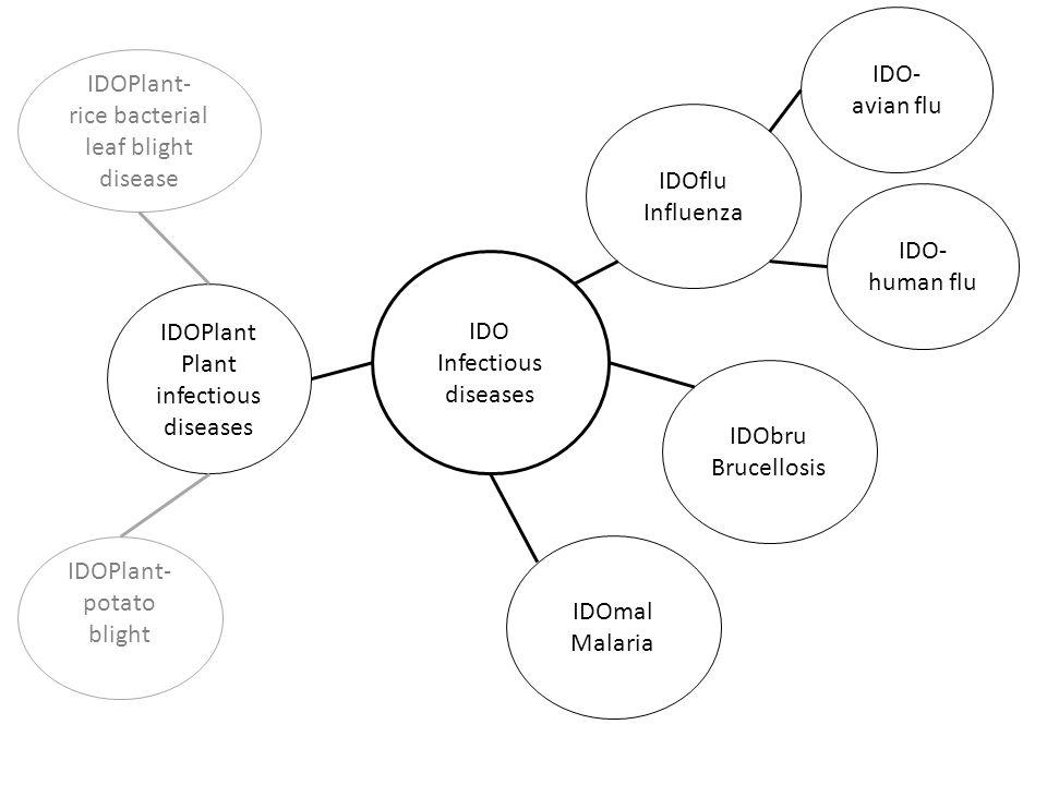 IDO Infectious diseases IDOmal Malaria IDOflu Influenza IDObru Brucellosis IDO- avian flu IDO- human flu IDOPlant Plant infectious diseases IDOPlant- rice bacterial leaf blight disease IDOPlant- potato blight