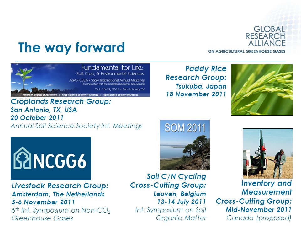 The way forward Livestock Research Group: Amsterdam, The Netherlands 5-6 November 2011 6 th Int. Symposium on Non-CO 2 Greenhouse Gases Croplands Rese