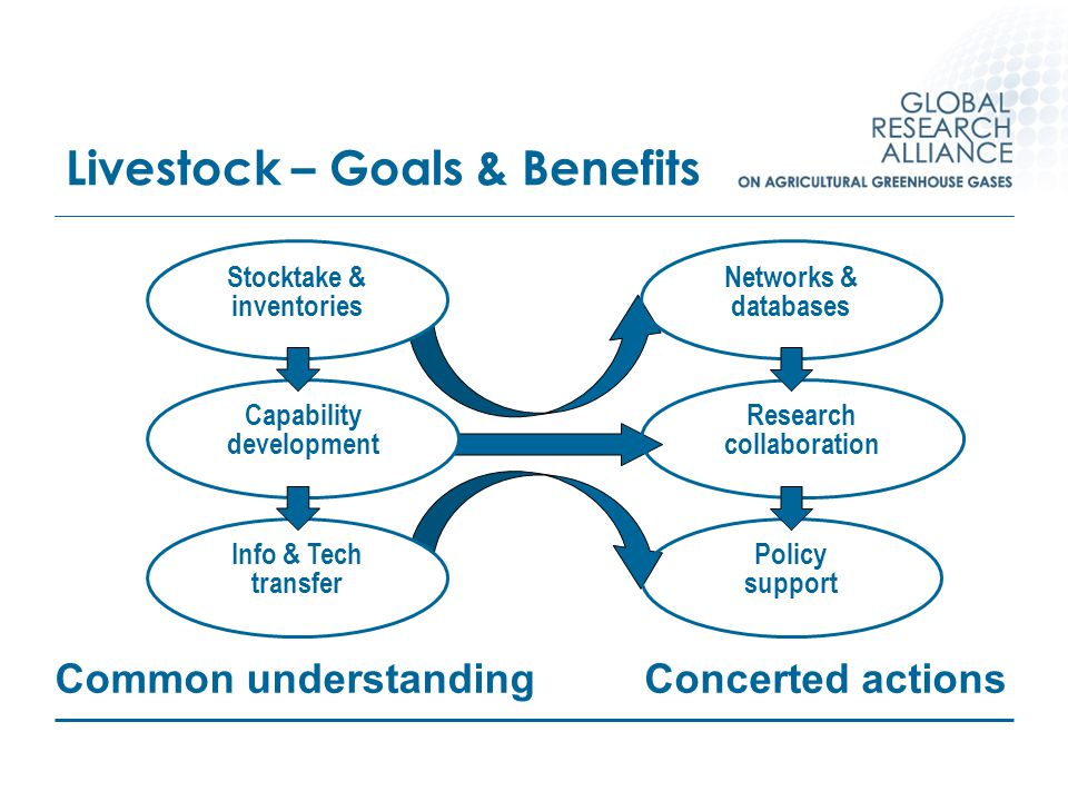 Livestock – Goals & Benefits Stocktake & inventories Info & Tech transfer Capability development Networks & databases Research collaboration Policy su