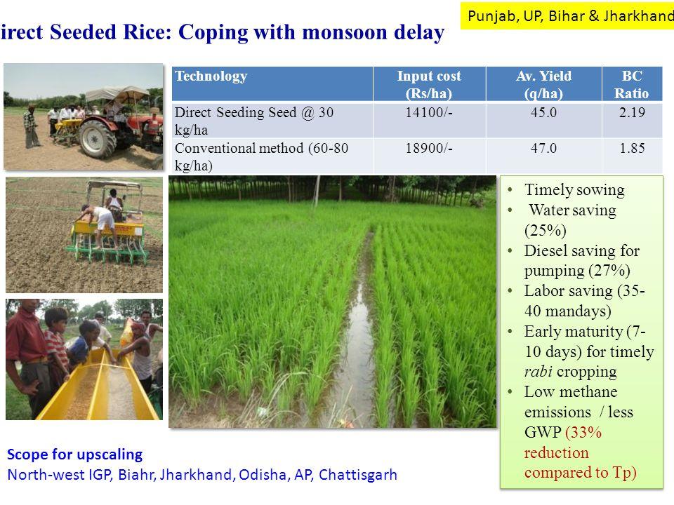 TechnologyInput cost (Rs/ha) Av. Yield (q/ha) BC Ratio Direct Seeding Seed @ 30 kg/ha 14100/-45.02.19 Conventional method (60-80 kg/ha) 18900/-47.01.8