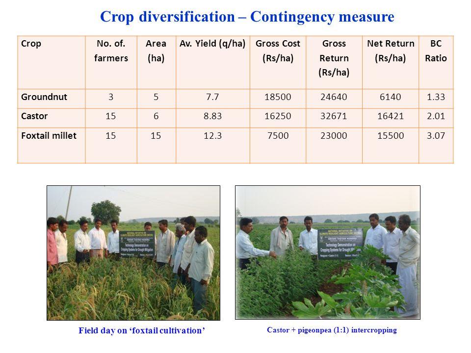 Crop No. of. farmers Area (ha) Av. Yield (q/ha) Gross Cost (Rs/ha) Gross Return (Rs/ha) Net Return (Rs/ha) BC Ratio Groundnut357.7185002464061401.33 C