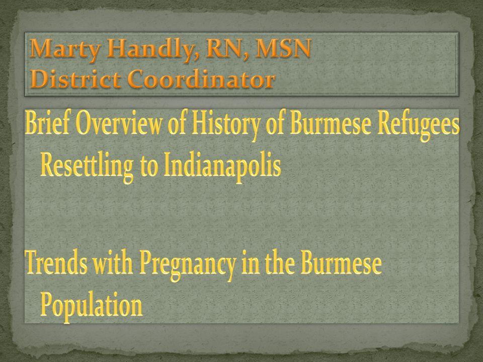 Marty Handly, RN, MSN District Coordinator Jessica Craig, MPH Epidemiologist Nunmawi Bualteng, RN, BSN Public Health Nurse Khawl Puii, BLA Prenatal Community Health Worker Pam Desir, MS, RD, CD, IBCLC District Nutritionist