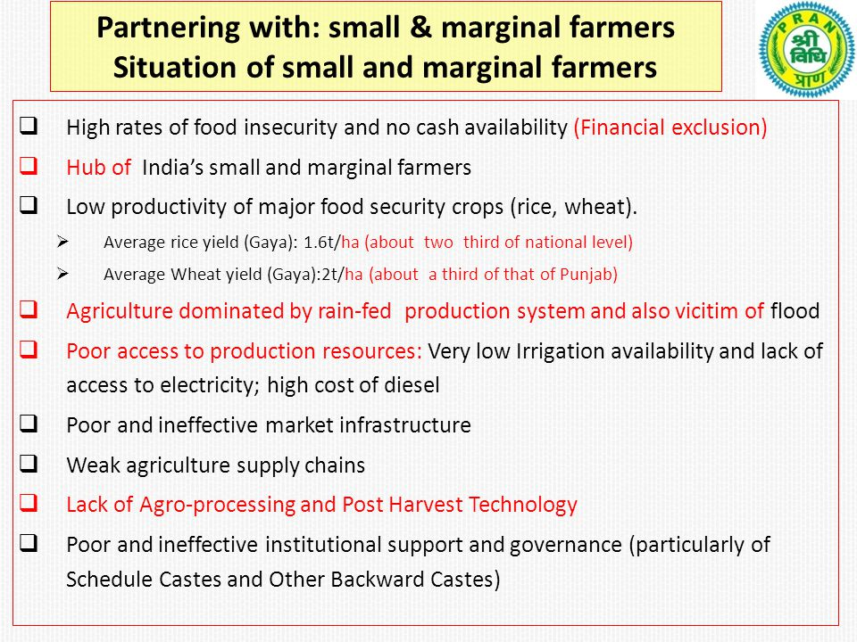 Partnering with: small & marginal farmers Situation of small and marginal farmers  High rates of food insecurity and no cash availability (Financial exclusion)  Hub of India's small and marginal farmers  Low productivity of major food security crops (rice, wheat).