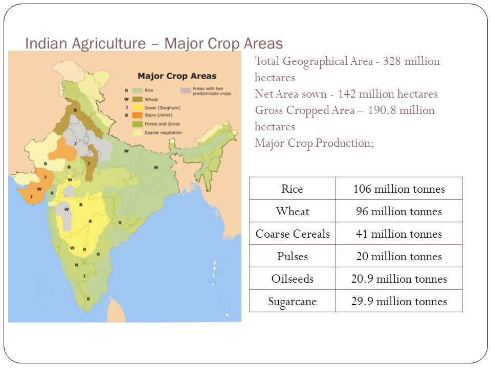 Indian Agriculture – Major Crop Areas Rice106 million tonnes Wheat96 million tonnes Coarse Cereals41 million tonnes Pulses20 million tonnes Oilseeds20
