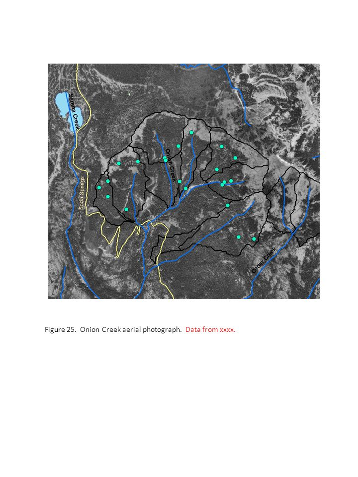 Figure 25. Onion Creek aerial photograph. Data from xxxx.