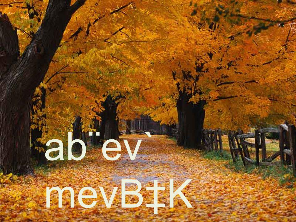 ab¨ev` mevB‡K