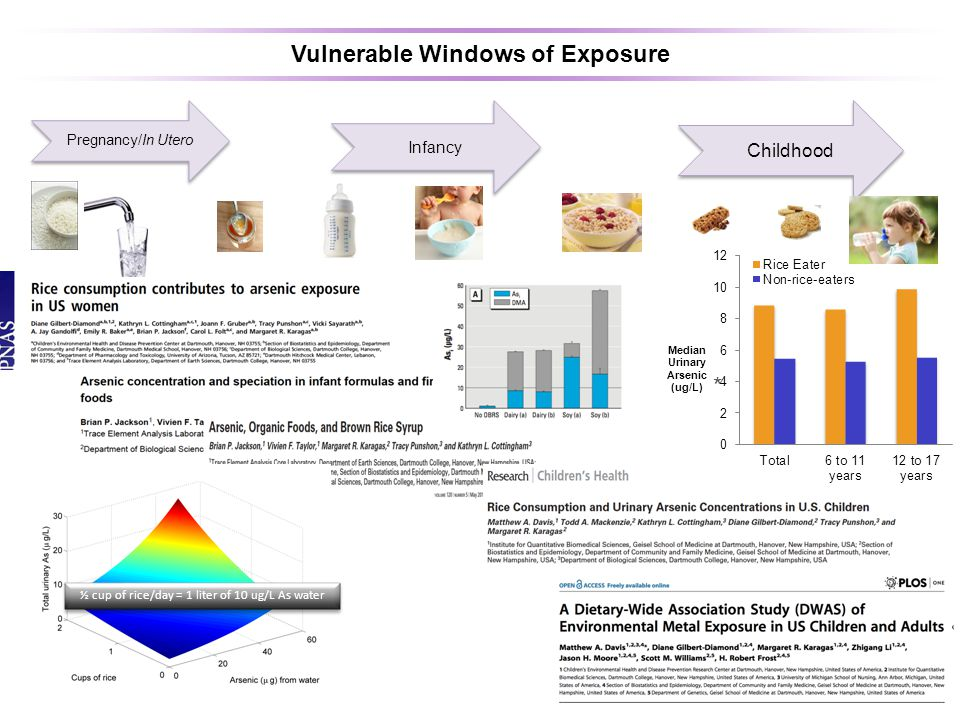 Pregnancy/In Utero Infancy Childhood Vulnerable Windows of Exposure ½ cup of rice/day = 1 liter of 10 ug/L As water