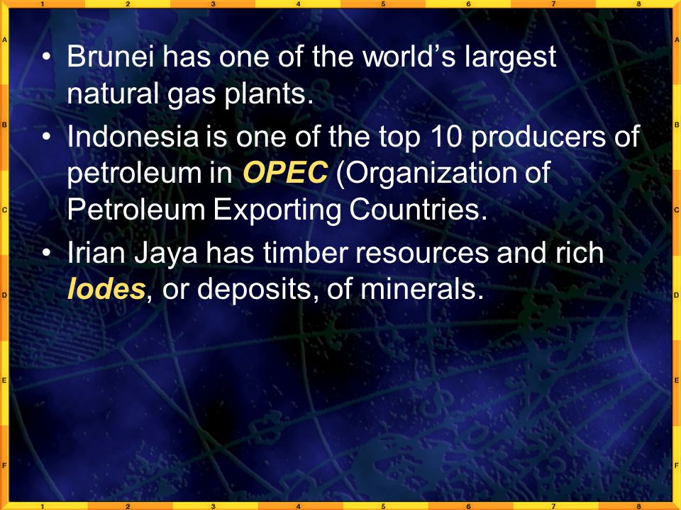 Brunei has one of the world's largest natural gas plants. Indonesia is one of the top 10 producers of petroleum in OPEC (Organization of Petroleum Exp