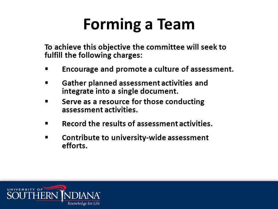 Forming a Team To achieve this objective the committee will seek to fulfill the following charges:  Encourage and promote a culture of assessment.