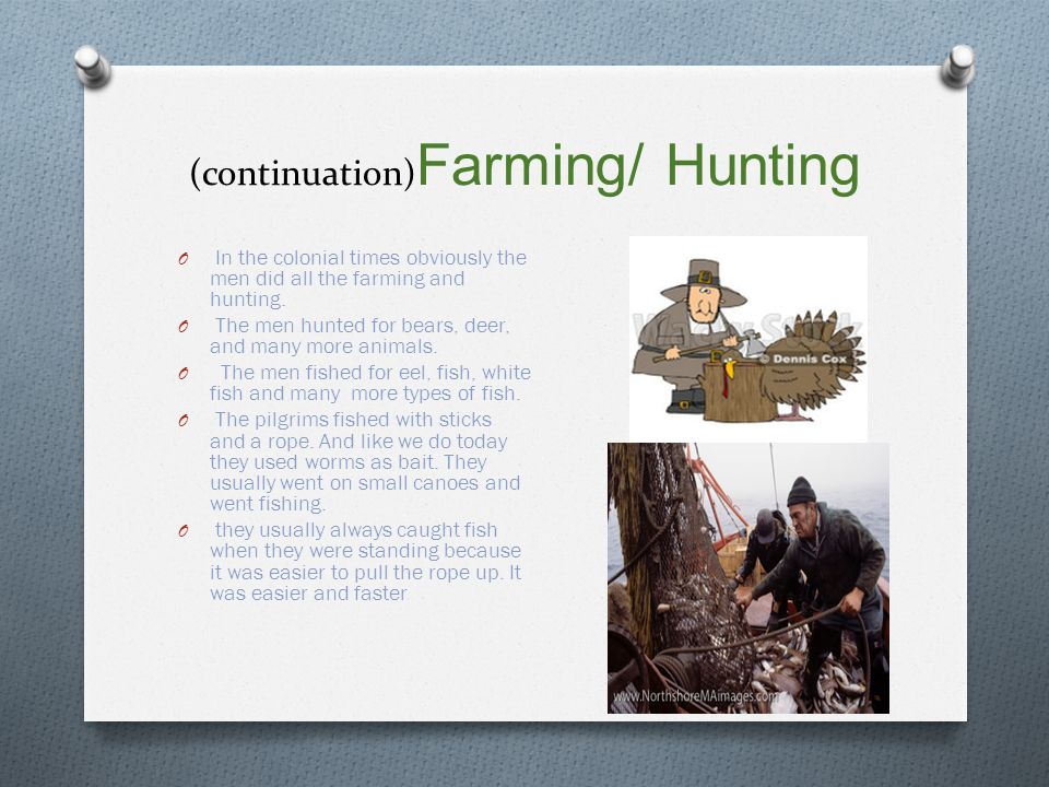 (continuation) Farming/ Hunting O In the colonial times obviously the men did all the farming and hunting.