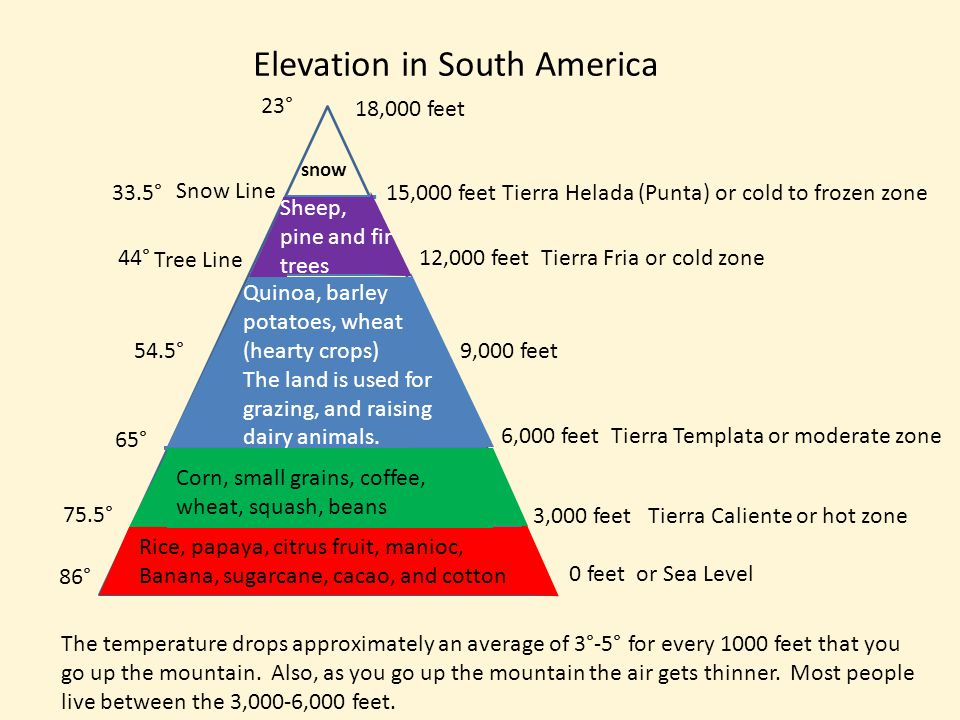 Elevation in South America 0 feet or Sea Level 3,000 feet Tierra Caliente or hot zone 6,000 feet Tierra Templata or moderate zone 9,000 feet 12,000 feet Tierra Fria or cold zone 15,000 feet Tierra Helada (Punta) or cold to frozen zone 18,000 feet Rice, papaya, citrus fruit, manioc, Banana, sugarcane, cacao, and cotton Corn, small grains, coffee, wheat, squash, beans Snow Line snow Tree Line The temperature drops approximately an average of 3°-5° for every 1000 feet that you go up the mountain.