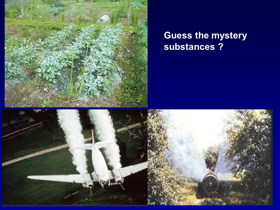 Guess the mystery substances
