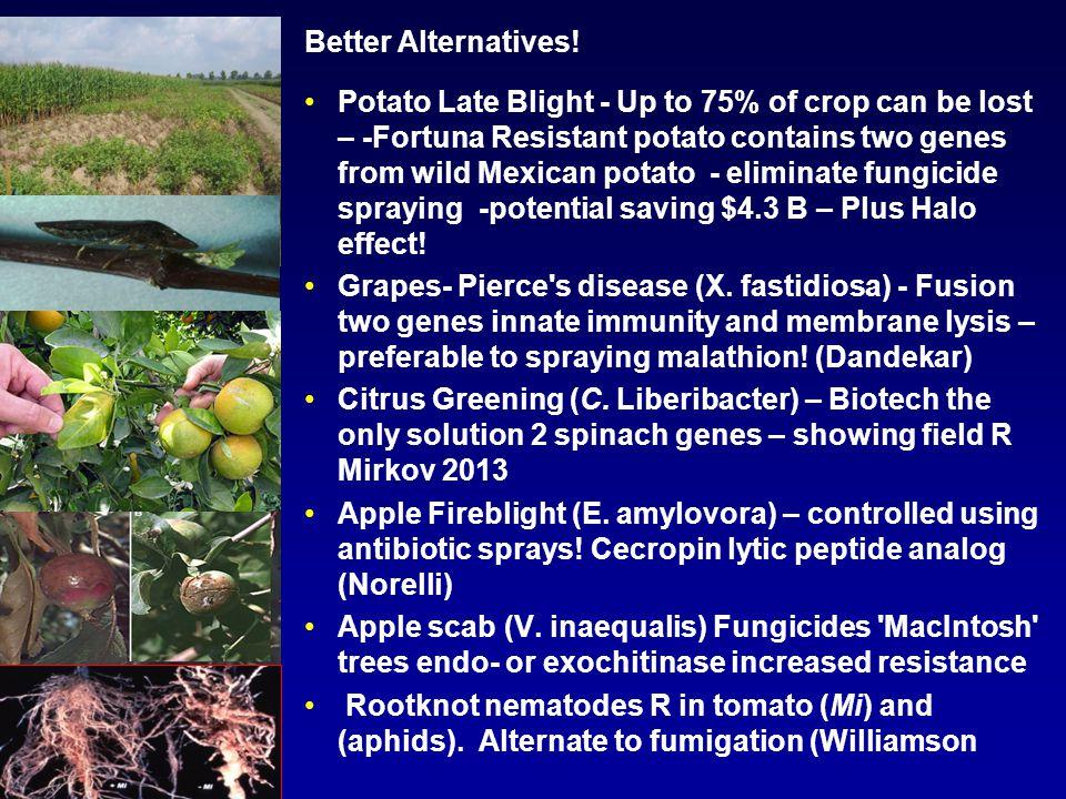 Better Alternatives.