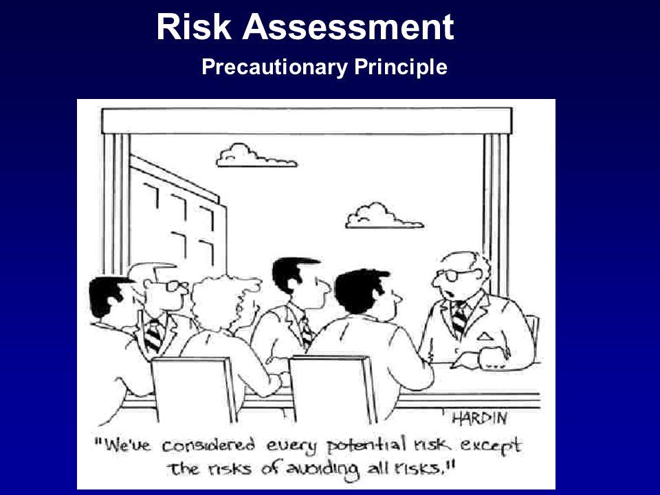 Risk Assessment Precautionary Principle
