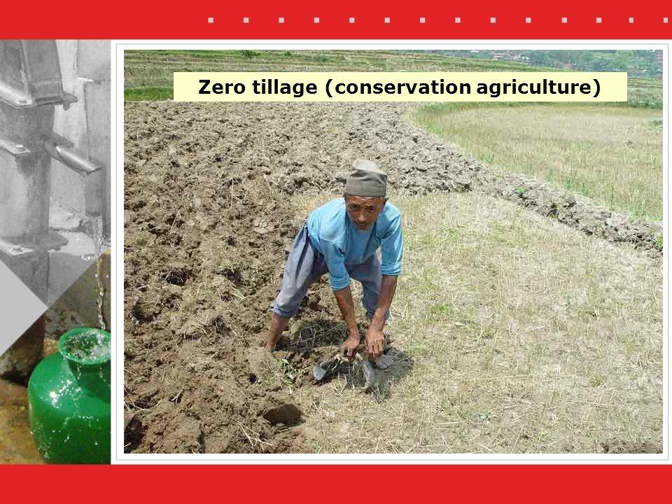 Zero tillage (conservation agriculture)