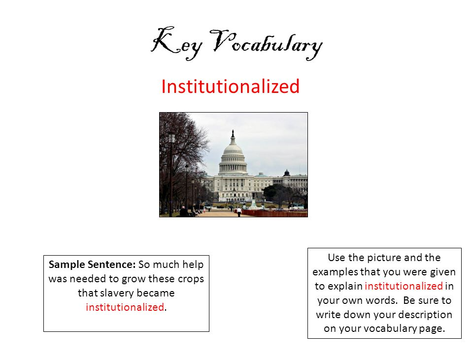 Key Vocabulary Institutionalized Use the picture and the examples that you were given to explain institutionalized in your own words.