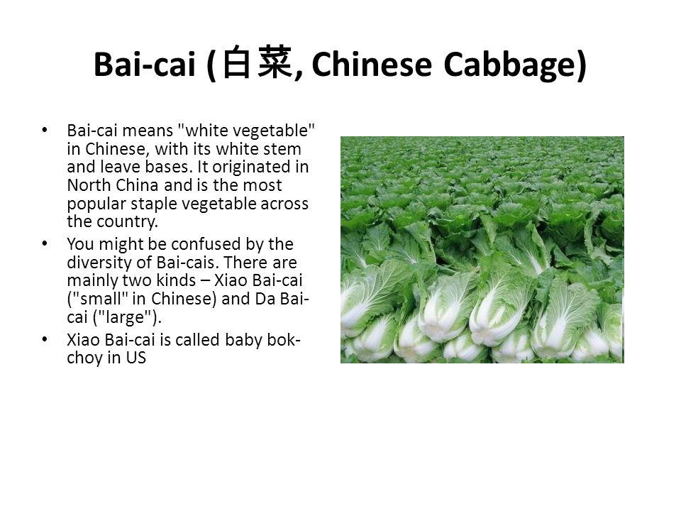 Bai-cai ( 白菜, Chinese Cabbage) Bai-cai means