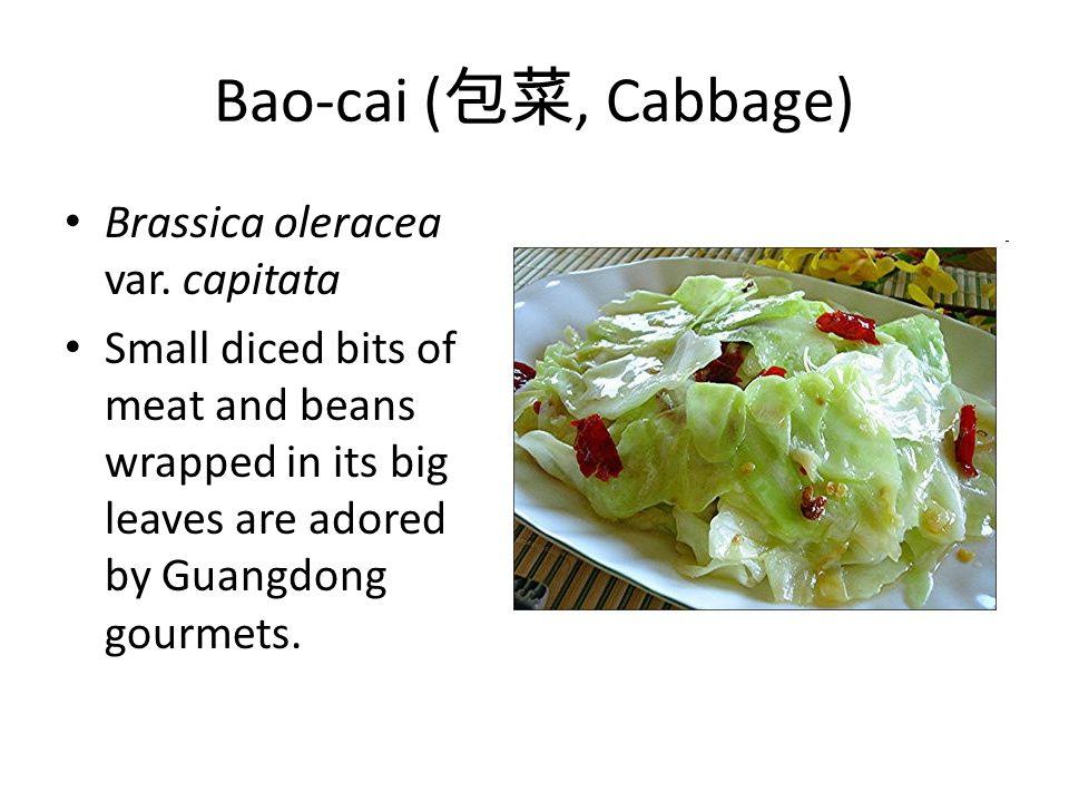 Bao-cai ( 包菜, Cabbage) Brassica oleracea var.