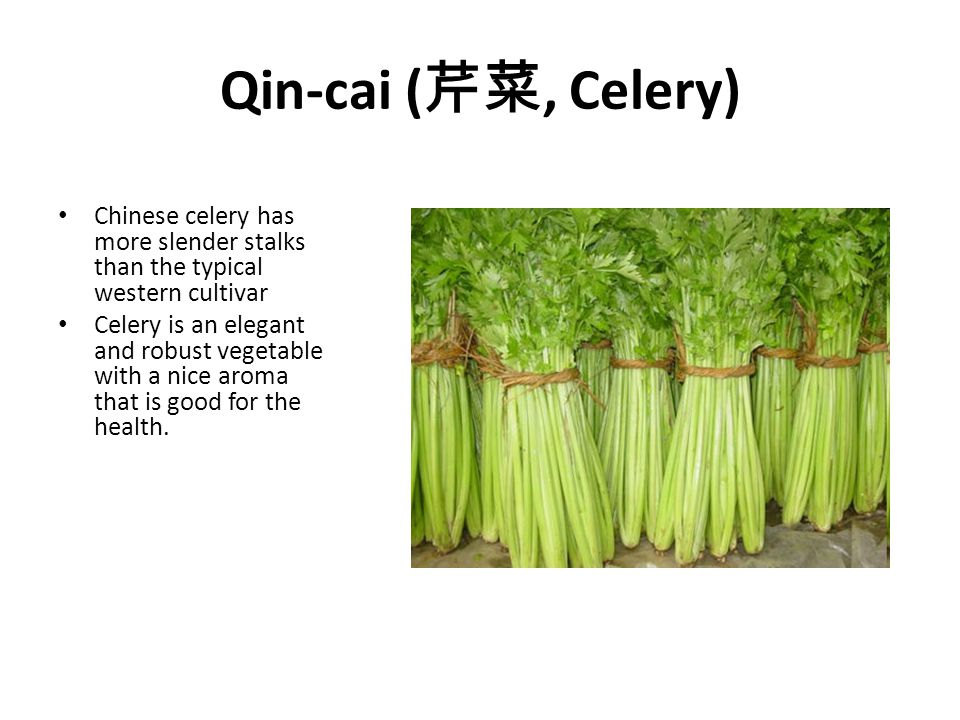 Qin-cai ( 芹菜, Celery) Chinese celery has more slender stalks than the typical western cultivar Celery is an elegant and robust vegetable with a nice a