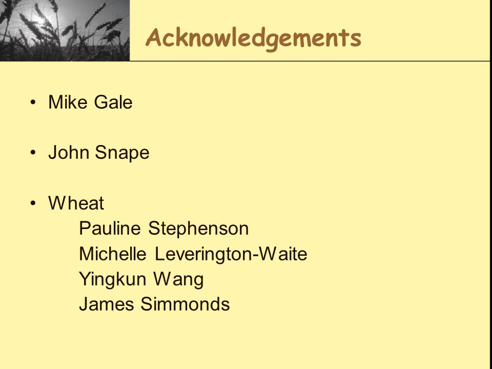 Acknowledgements Mike Gale John Snape Wheat Pauline Stephenson Michelle Leverington-Waite Yingkun Wang James Simmonds