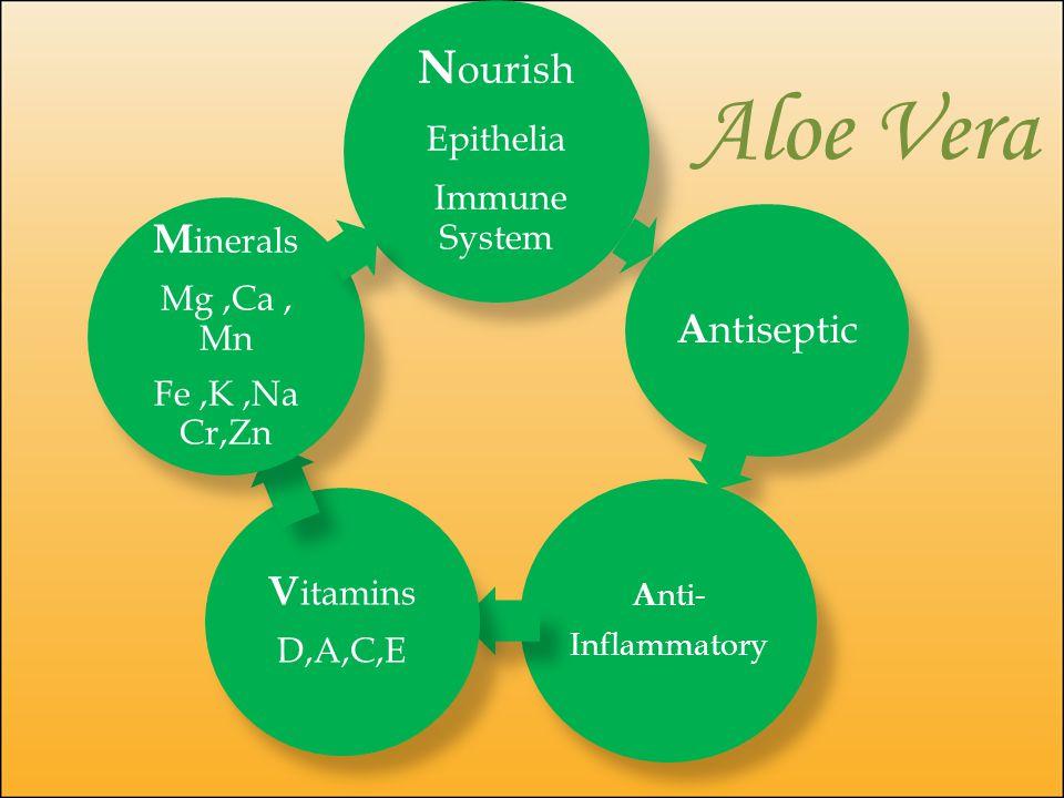 N ourish Epithelia Immune System A ntiseptic A nti- Inflammatory V itamins D,A,C,E M inerals Mg,Ca, Mn Fe,K,Na Cr,Zn Aloe Vera