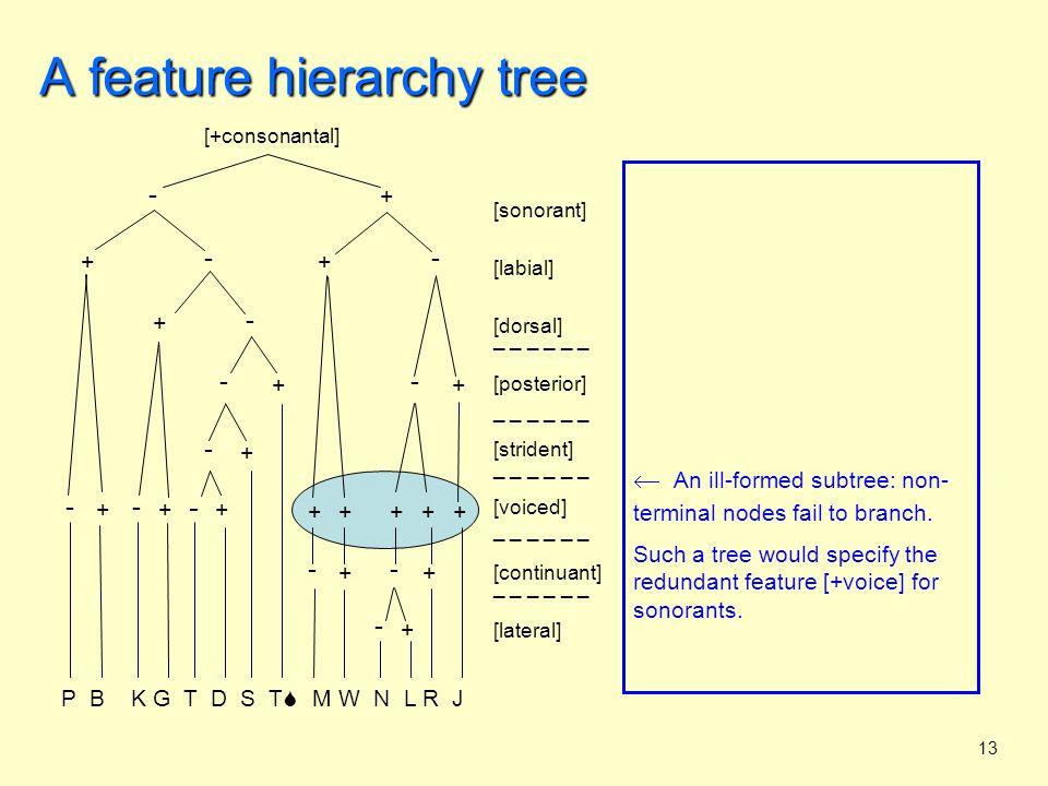 14 A feature hierarchy tree Predictions: 1.