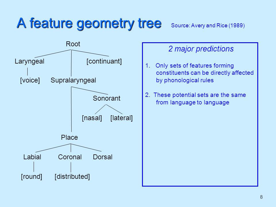 8 A feature geometry tree Source: Avery and Rice (1989) 2 major predictions 1.