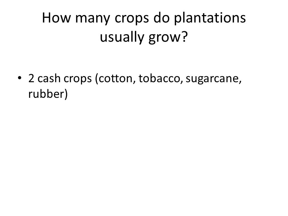 How many crops do plantations usually grow 2 cash crops (cotton, tobacco, sugarcane, rubber)