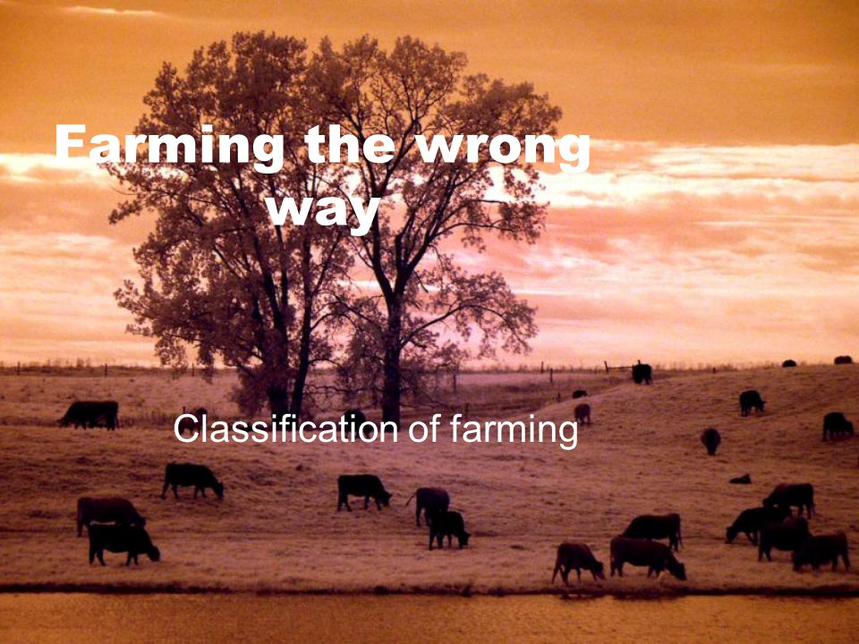 Farming the wrong way Classification of farming