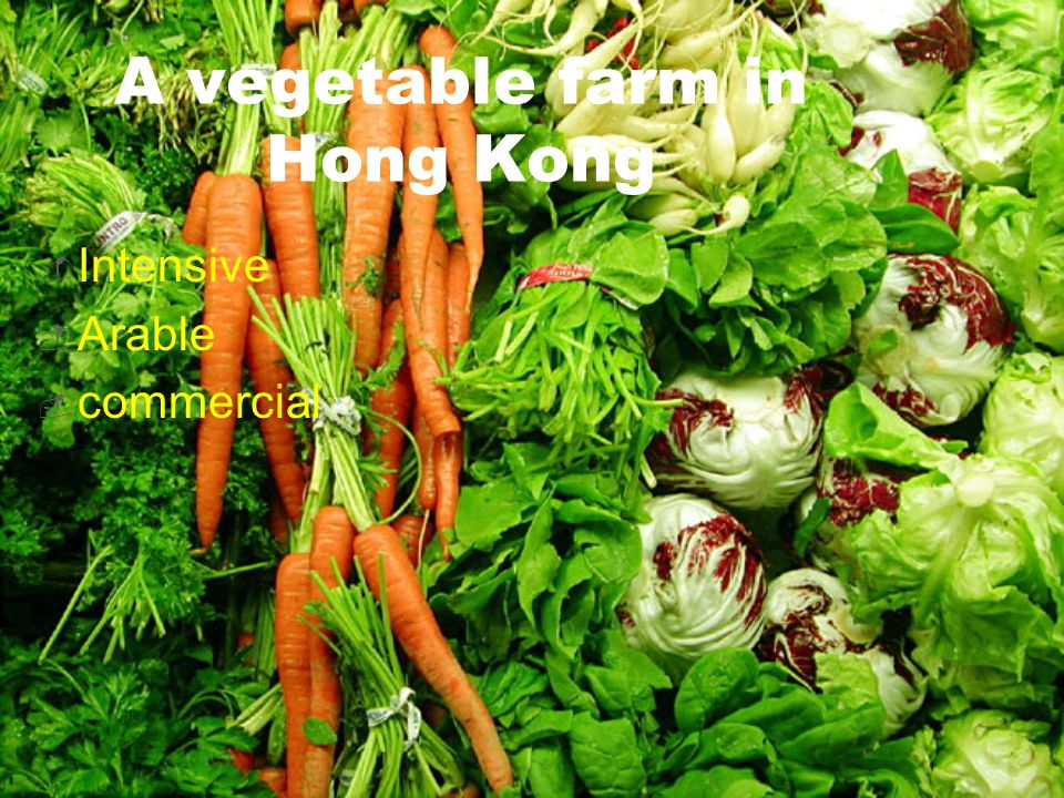 A vegetable farm in Hong Kong  Intensive  Arable  commercial