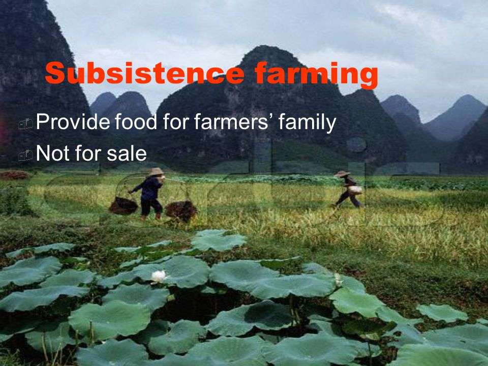 Subsistence farming  Provide food for farmers' family  Not for sale