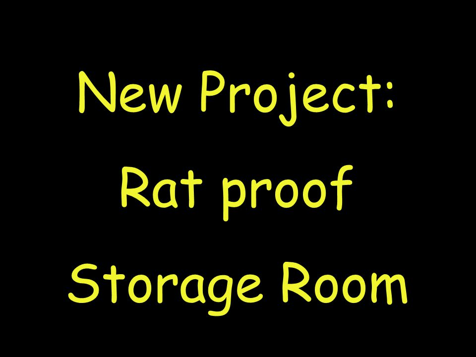New Project: Rat proof Storage Room