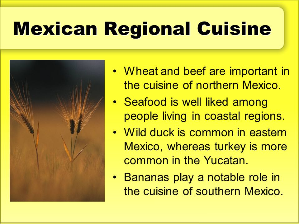 Mexican Regional Cuisine Wheat and beef are important in the cuisine of northern Mexico. Seafood is well liked among people living in coastal regions.