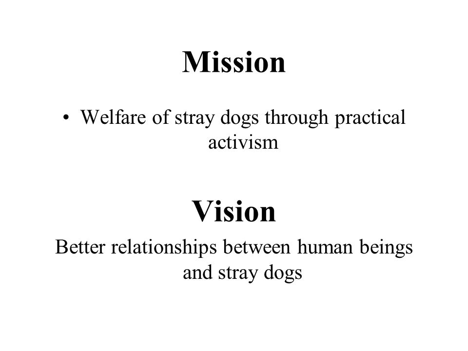 Mission Welfare of stray dogs through practical activism Vision Better relationships between human beings and stray dogs