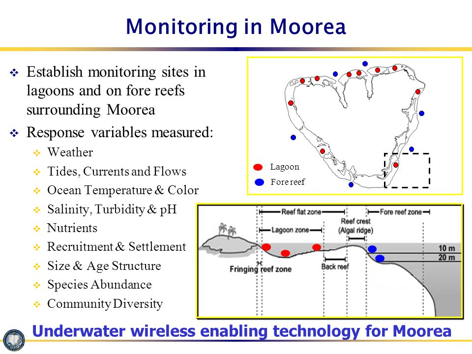 Monitoring in Moorea  Establish monitoring sites in lagoons and on fore reefs surrounding Moorea  Response variables measured:  Weather  Tides, Currents and Flows  Ocean Temperature & Color  Salinity, Turbidity & pH  Nutrients  Recruitment & Settlement  Size & Age Structure  Species Abundance  Community Diversity Lagoon Fore reef Underwater wireless enabling technology for Moorea