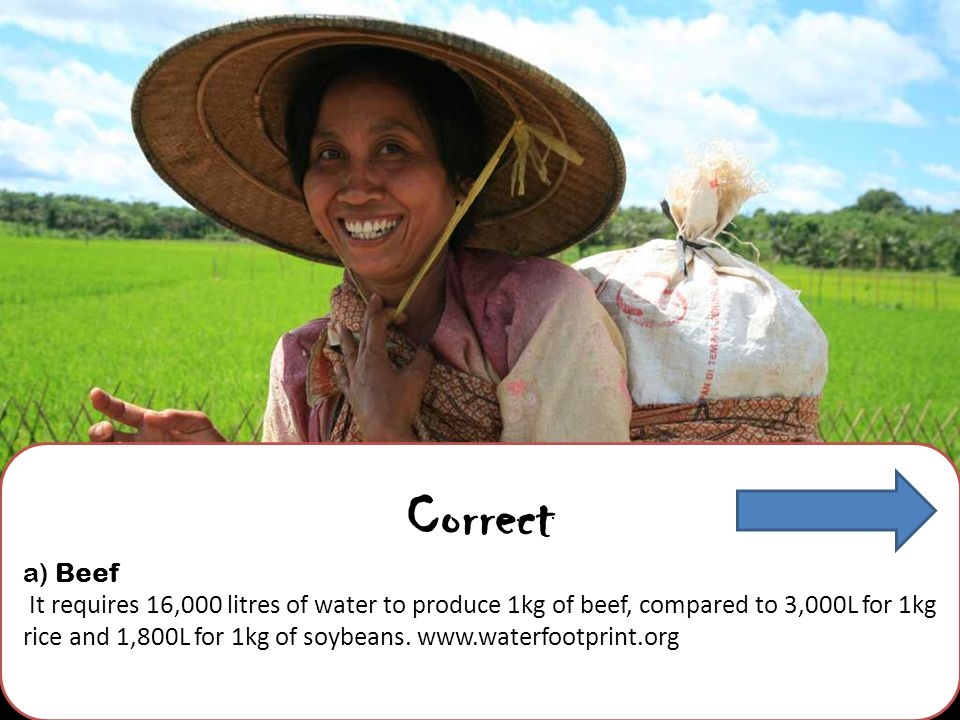 Correct a) Beef It requires 16,000 litres of water to produce 1kg of beef, compared to 3,000L for 1kg rice and 1,800L for 1kg of soybeans.