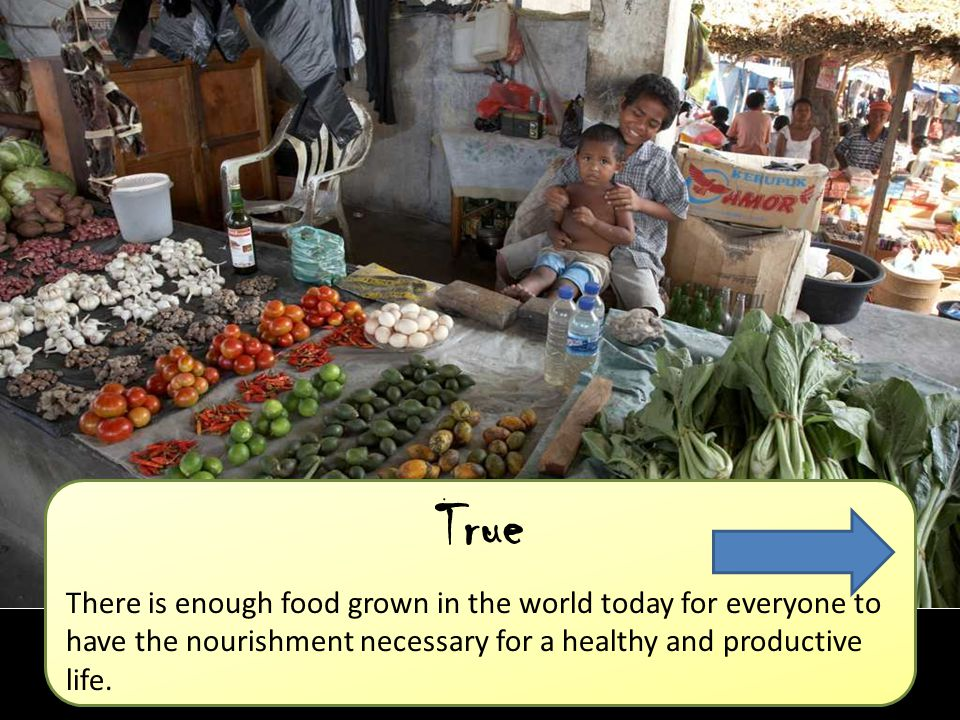 True There is enough food grown in the world today for everyone to have the nourishment necessary for a healthy and productive life.