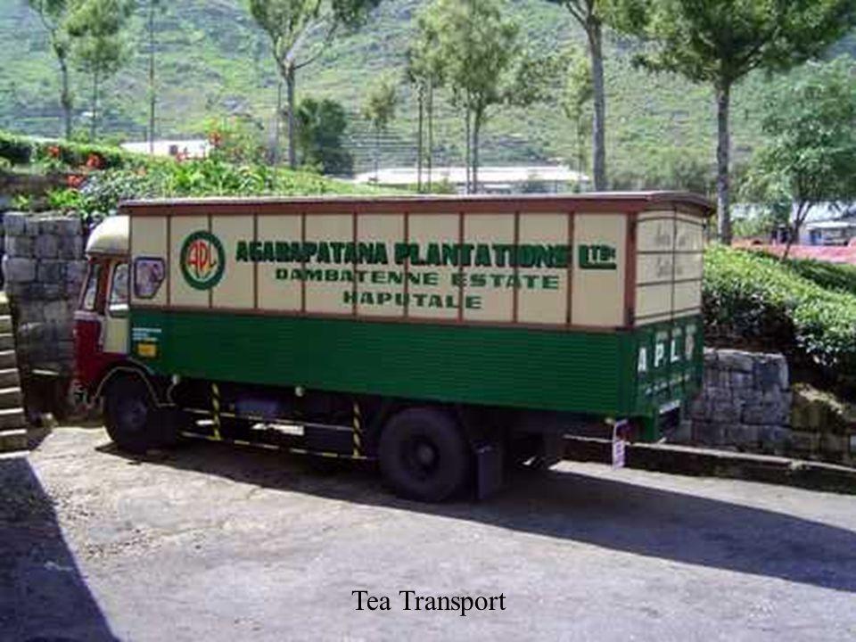Tea Transport
