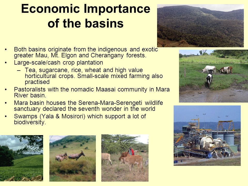 Economic Importance of the basins Both basins originate from the indigenous and exotic greater Mau, Mt.