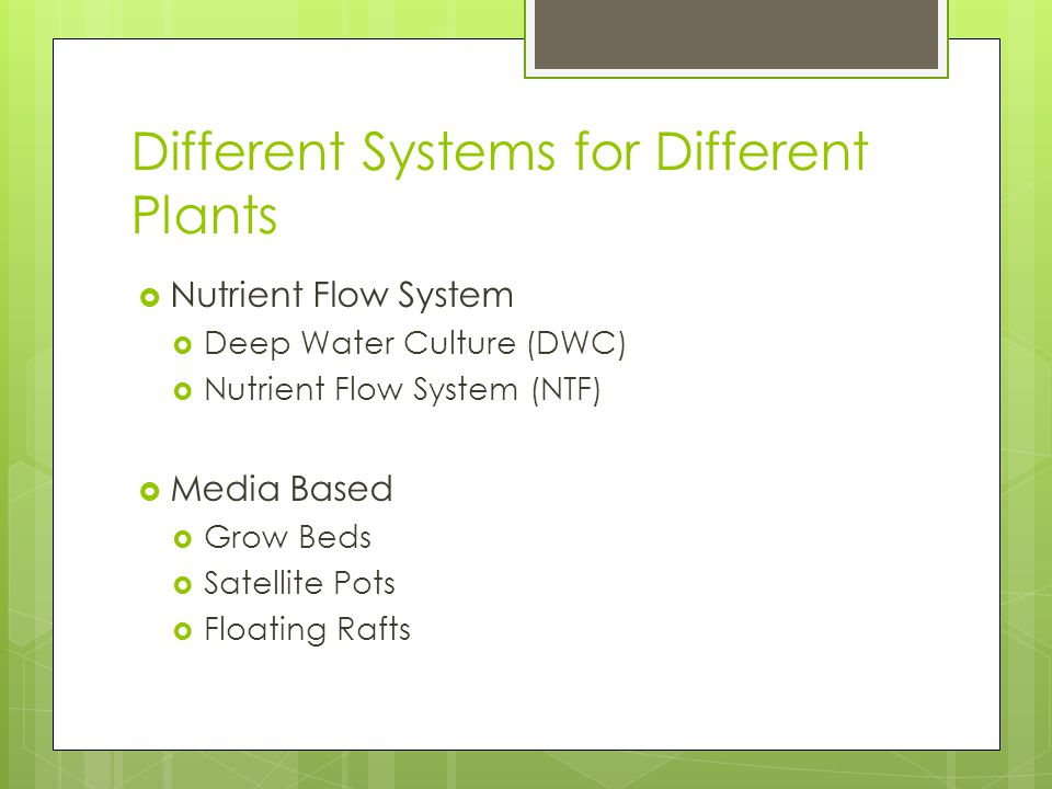 Different Systems for Different Plants  Nutrient Flow System  Deep Water Culture (DWC)  Nutrient Flow System (NTF)  Media Based  Grow Beds  Satellite Pots  Floating Rafts