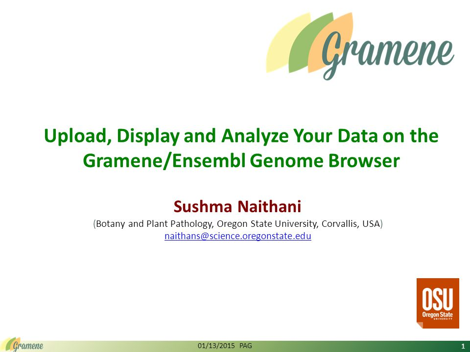 Upload, Display and Analyze Your Data on the Gramene/Ensembl Genome Browser Sushma Naithani (Botany and Plant Pathology, Oregon State University, Corvallis, USA) naithans@science.oregonstate.edu 01/13/2015 PAG 1
