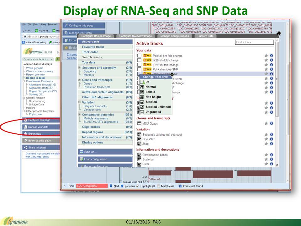 Display of RNA-Seq and SNP Data 01/13/2015 PAG