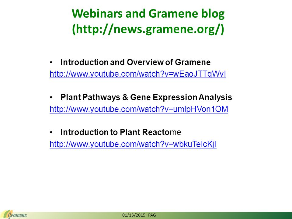 Introduction and Overview of Gramene http://www.youtube.com/watch?v=wEaoJTTqWvI Plant Pathways & Gene Expression Analysis http://www.youtube.com/watch?v=umlpHVon1OM Introduction to Plant Reactome http://www.youtube.com/watch?v=wbkuTeIcKjI Webinars and Gramene blog (http://news.gramene.org/) 01/13/2015 PAG