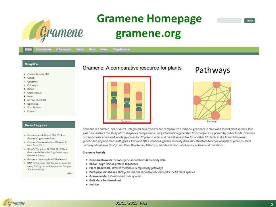 2 Pathways 01/13/2015 PAG Gramene Homepage gramene.org
