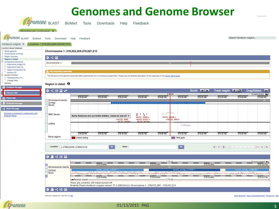 Introduction and Overview of Gramene http://www.youtube.com/watch?v=wEaoJTTqWvI Plant Pathways & Gene Expression Analysis http://www.youtube.com/watch?v=umlpHVon1OM Introduction to Plant Reactome http://www.youtube.com/watch?v=wbkuTeIcKjI Webinars and Gramene blog (http://news.gramene.org/) 01/13/2015 PAG