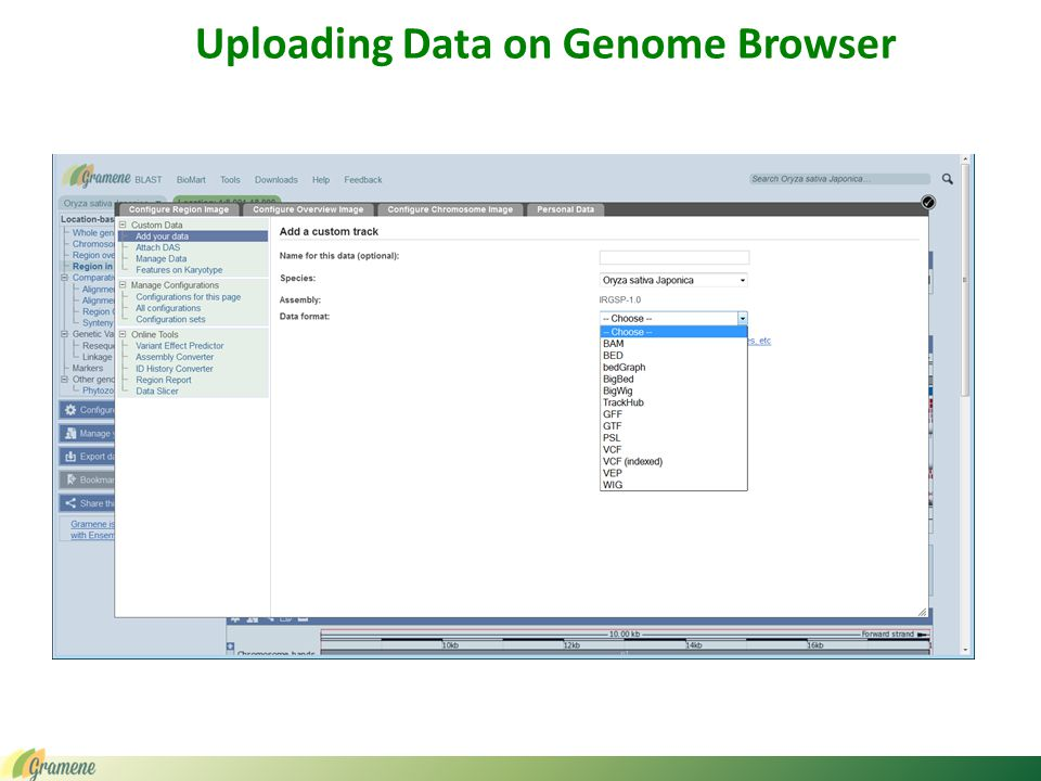 Uploading Data on Genome Browser