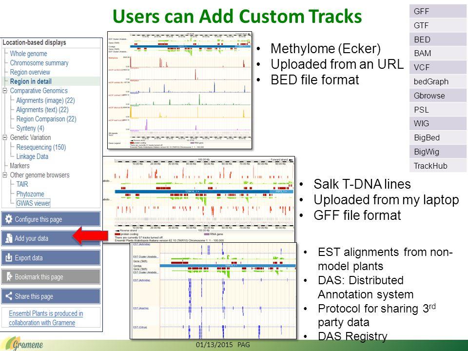 Uploading data on Genome Browser 01/13/2015 PAG