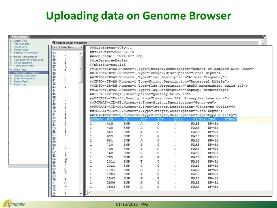 SAB 2013 Gramene - Exploring Function Through Comparative Genomics and Network Analysis NSF IOS 1127112 Doreen Ware, PI (USDA ARS, CSHL) Kapeel Chougule, Yinping Jiao, Sunita Kumari, Vivek Kumar, Marcela K.