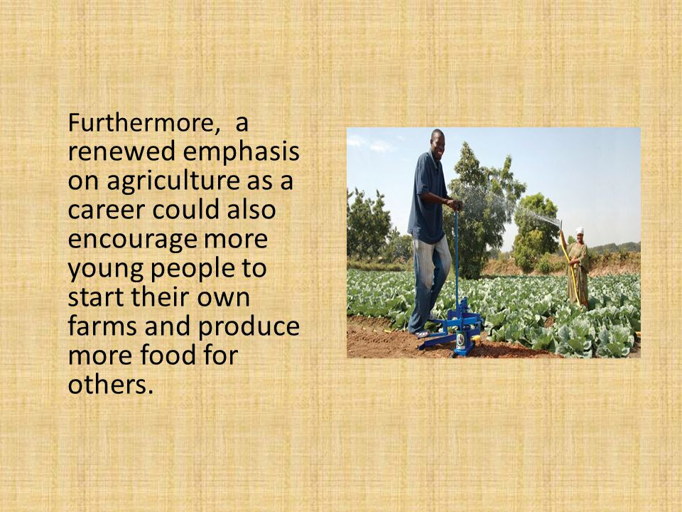 Furthermore, a renewed emphasis on agriculture as a career could also encourage more young people to start their own farms and produce more food for others.
